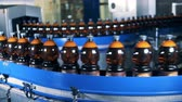 fermented : Long conveyor belt with brown beer bottles Stock Footage