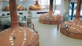 espaçoso : Spacious brewery hall with copper tanks