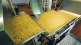 processado : Plant unit with massive transporter and crisps moving along it. Potato chips production line. Stock Footage