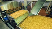 processado : Processed potato pieces are moving along the transporter