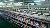 katoenplant : Clothing factory unit with reels getting wound in a textile factory. Stockvideo