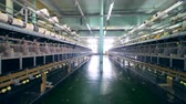 katoenplant : Garment plant with spools and special equipment