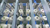slierten : Garment factory production equipment. White threads are forming fabric while unwinding Stockvideo