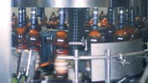 fermented : Bottles filled with beer are rotating in a factory machine