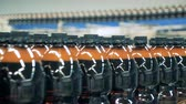 fermented : A row of plastic beer bottles filled with liquid moving along the conveyor
