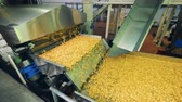 ジャンク : Fresh chips on a modern conveyor at a food factory.