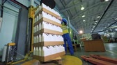 bottiglie di plastica : Carton boxes with plastic containers are getting stacked by male loader Filmati Stock