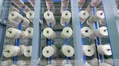 szövés : Tailoring loom with winding threads. Industrial textile factory. Stock mozgókép