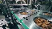 montaj : Factory machine packs containers with dried breads on a conveyor. Food packaging line. Stok Video