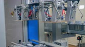 wysyłka : Robotic production line work at a factory, automated assembly line putting carton sheets on a conveyor.