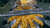 divider : Heap of fried chips falling into a sorting container in a facility.