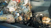 bidone : Garbage on a conveyor belt, close up.