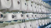 szövés : Spools with white threads are slowly rotating. Modern textile factory.