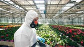 observação : Male scientist is walking along the greenhouse with a laptop