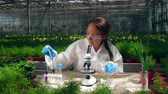 observação : Chemicals are getting tested on plants by a female agronomist