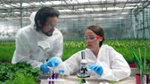 genética : Two biologists are having a research with chemicals in the greenery