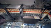 roller conveyor : Plant conveyor works in a facility, moving products.