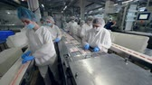自動化 : Many factory workers pack products, taking them from a moving conveyor. 動画素材