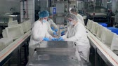 pacco : Factory workers pack products into plastic containers in a facility. Filmati Stock