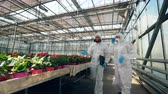 plant fertilizer : Glasshouse with bright flowers and two chemists walking along them