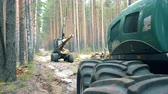 тележка : Forest harvester is relocating felled timber