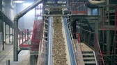 pedreira : Working conveyor moves crushed stone at a plant. Vídeos