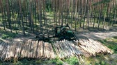 harvester : Environmental problem deforestation, logging. A machine works with stacks of trunks in forest.