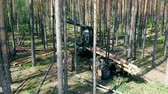 átalakítás : Industrial harvester is loading felled woods. Forest, tree logging, aerial view.