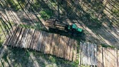 tala : Industrial truck is unloading sawn woods in a view from above. Forest, tree logging, aerial view. Archivo de Video