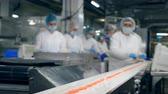 workforce : Factory workers are removing fish products from the conveyor Stock Footage