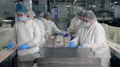 workforce : Female technicians are relocating crab sticks. Factory Workers Assembling products.