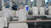 paketleme : Processing of fresh crab sticks held by female technicians