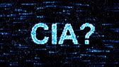 pelúcia : Cyberespionage in USA. Hacking of information technology. Central Intelligence Agency