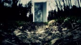 Mystery. An alien world. The Mysterious Door. 9