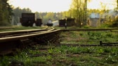 индикатор : Railroad tracks. Arrow switch ways.