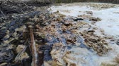 zwerfvuil : Water pollution. Contamination of the reservoirs of the earth. Water is not suitable for drinking. Stockvideo