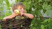 expressando : Kid sitting in the basket and eating green apple. Outdoor activities. Child in the park.