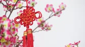 próspero : Traditional Chinese new year decor hanging on blossom tree. Wind is blowing.