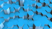 lattice : Abstract hexagonal form of low poly