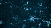 sensorial : Real Neuron synapse network. Stock Footage