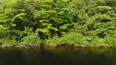 A tracking shot from a Drone on the Muskoka River Stock Footage