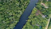 High above the Muskoka RIver with a Drone Stock Footage