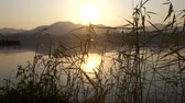 tranquility : West Lake in Hangzhou, China in the evening with the golden sunset Stock Footage
