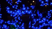 electric garland in the form of blue flowers on a tree Stock Footage