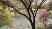 romance : nature landscape view of autumn river while joining Sagano romantic train in Kyoto, Japan