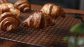vajas : Fresh croissant a flaky, viennoiserie pastry on wooden board.