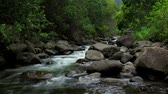 smooth water : Tropical River Time Lapse