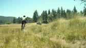 pasture : Man Mountain Biking In Meadow On Summer Day  Stock Footage