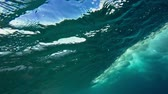 probówki : Underwater Angle of Tropical Blue Ocean Wave Crashing Wideo