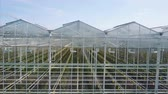 розы : Aerial video of greenhouses Стоковые видеозаписи